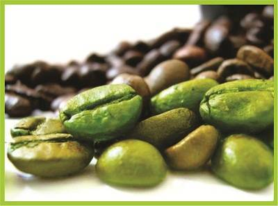 green coffee, green coffee membakar lemak, green coffee asli, green coffee murni, green coffee pelangsing, green coffee aman, manfaat green coffee, khasiat green coffee, harga green coffee, testimoni green coffee,